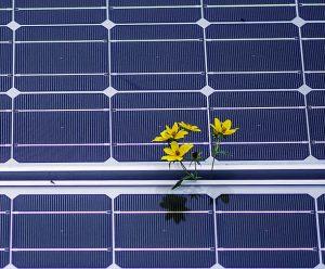 solar_energy_square